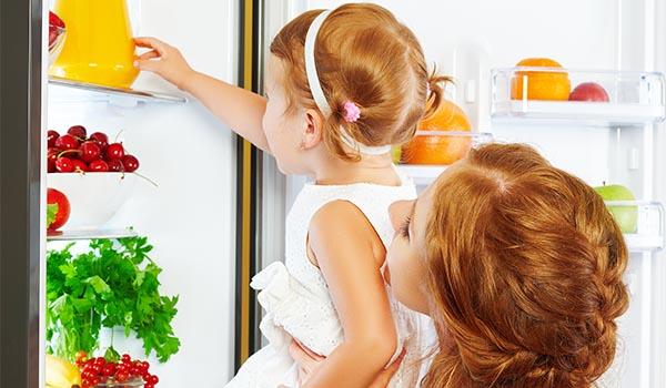best refrigerator brands for families